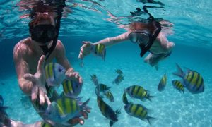 paket snorkeling belitung